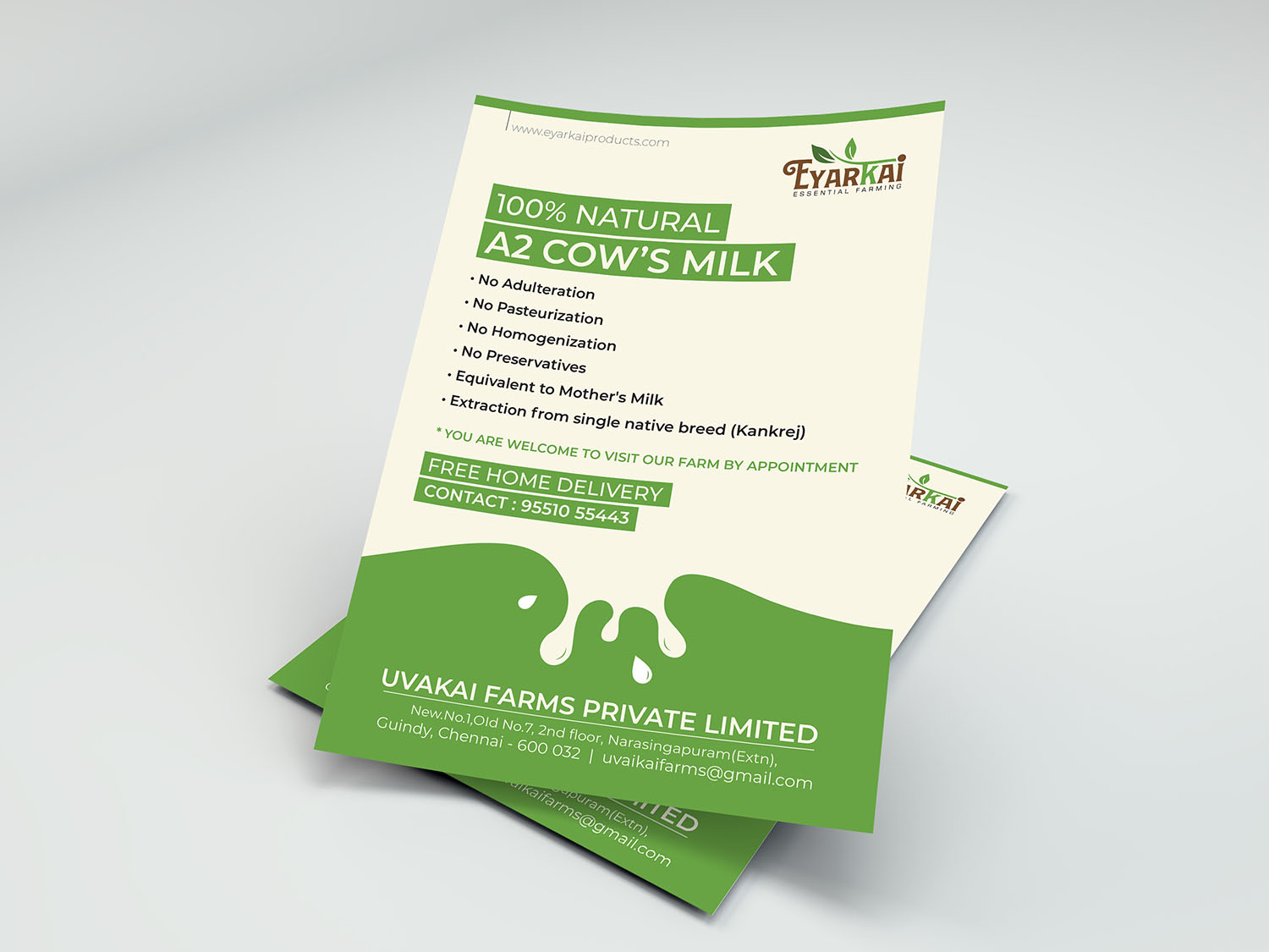 Flyer Design Company In Chennai